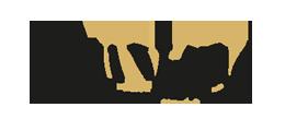 wellvitale fitnessstudio jüterbog logo